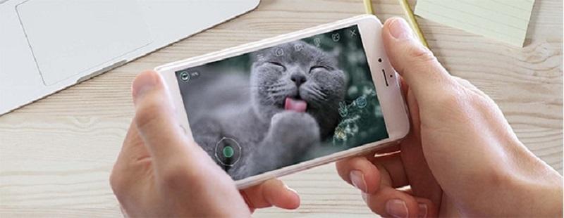 猫用ロボット「Ebo(イーボ)」Ebo搭載の1080HDカメラを通して、可愛い猫ちゃんの写真や動画をタイムリーに撮影することができます。