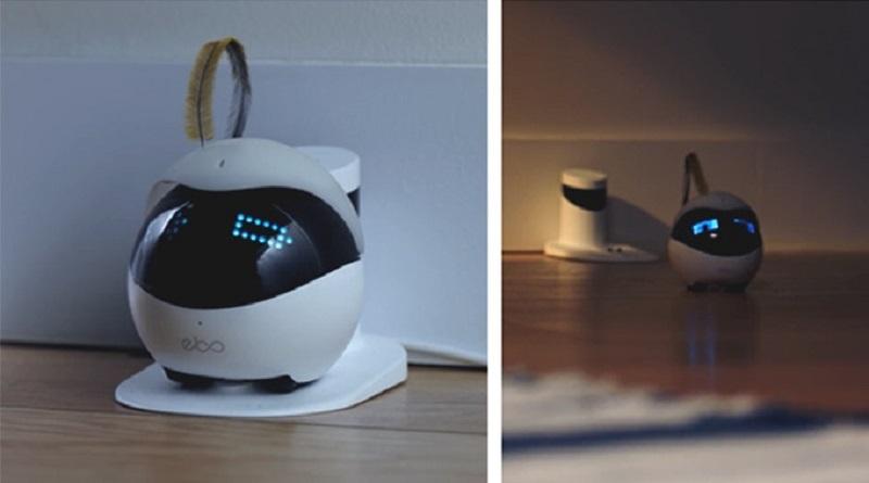猫用ロボット「Ebo(イーボ)」ロボット掃除機のルンバのように、バッテリー残量が少なくなると自動的にスタンド型充電器に帰還し、チャージをしてくれます。