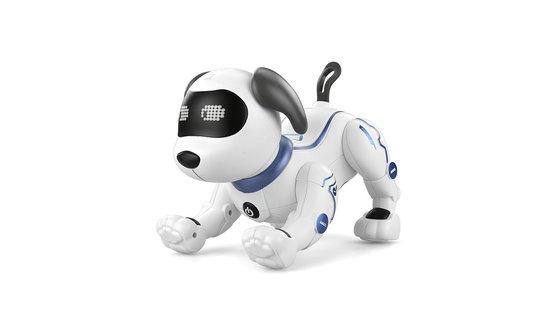 犬型ロボット スタントドッグ 簡易プログラミング、英語音声指示もできる