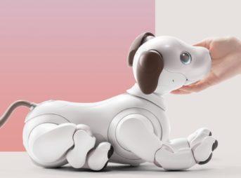 ペットロボットのおすすめはコレ!各動物別人気ランキング3選【2020年最新】