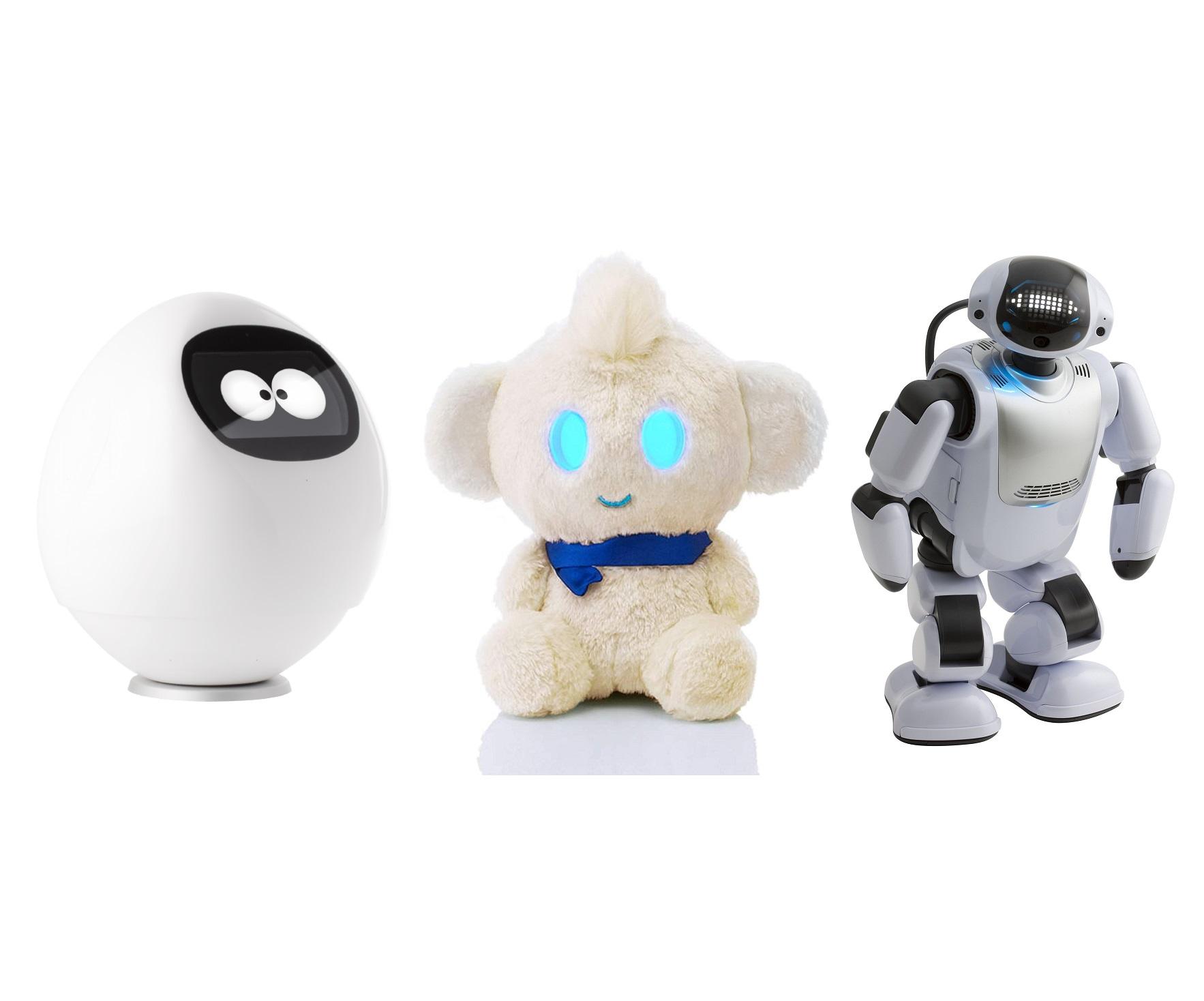 senior-care-communication-robot